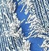 ג'ינס בהיר + כחול רויאל