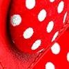 אדום מוברש + אדום נקודות